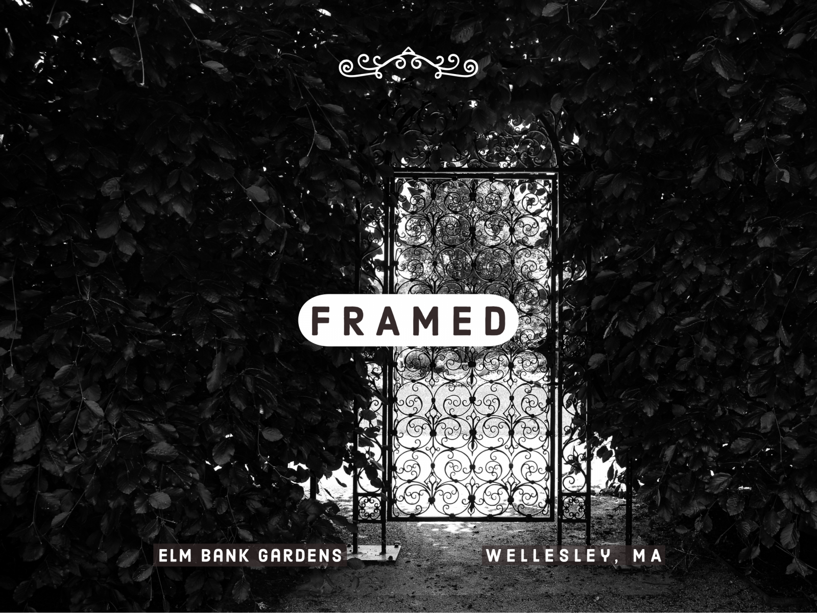 Framed: A Collection